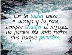 Persevera!!! #Coaching #Motivación #Resiliencia