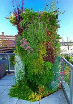 Awesome chimney garden