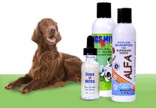 Dogs n Mites products help pets to fight demodex mange mites