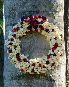 Popcorn and Cranberry Wreath for the birds.  From Birds and Bloom magazine I might use straw form and peanut butter...avoid stringing
