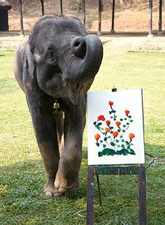 At Chiang Mai's Maesa Elephant Camp, private jet guests watched a young elephant produce this work of art.