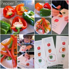 pepper taste test activity with printable forms