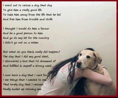 Sometimes the dog rescues you