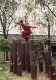 ♂ World martial art, Chinese Kungfu
