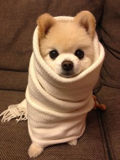 its cold.