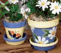 Lots of painting on clay pots.