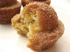 Coffee Cake Muffins Crusted with Cinnamon and Sugar - the claim...WARNING: They taste like a donut. Be prepared for euphoria.