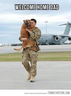 Service dogs help veterans cope with PTSD and help them readjust to civilian life