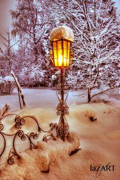 lights, lamps, winter trees, snow, winter wonderland, holidays, narnia, photography, austria