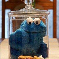 cookie monster, birthday parti, cooki monster, cooki jar, cookie jars, parti idea