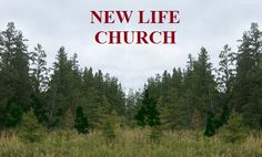 This is the church that has changed my life.  http://www.newlifemn.org/