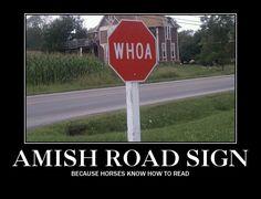 That is hilarious! laugh, horses, whoa, amish road, funni, humor, road sign, quot, roads