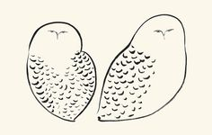 Two Owls by catsiknow, via Flickr