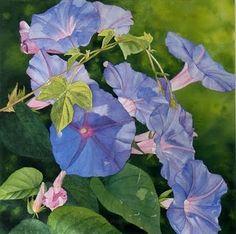 morning glories #journal #watercolor #blue #flowers