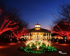 The Visitor Pavilion during Holiday Lights