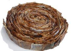 600 1 Valeria Burgoa tea bag art