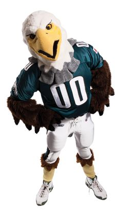 Swoop is the mascot for the Philadelphia Eagles. He has been the mascot since 1995.