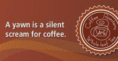 A yawn is a silent scream for coffee | A & E Coffee Roastery & Tea | www.aeroastery.com