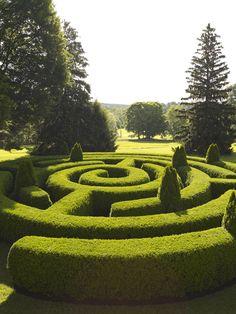 maze in a landscape