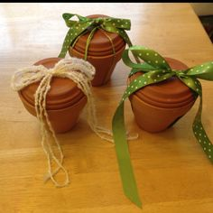 Gift Idea- so easy: potting soil in a ziploc bag, packet of seeds inside, saucer makes the lid, add cute ribbon. Great for kids too!