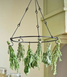 Herb Hanger - what a fab gift idea for that gardener, perhaps for the non-gardener you could gift with homegrown herbs attached