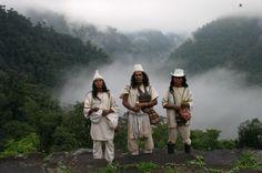 Ciudad Perdida, Tayrona Jungle, Colombia