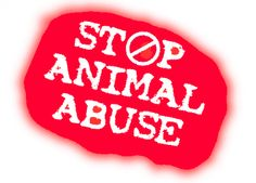 STOP ABUSE TO ALL ANIMALS -