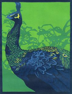 9x12 Exotic bird print Peacock by InklingForDesign on Etsy, $200.00