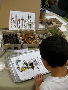 lots of natural materials, lots of ideas for natural classroom