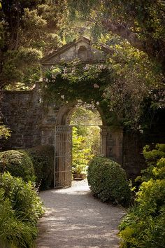 garden wall and gate.... and beautiful wandering stone path