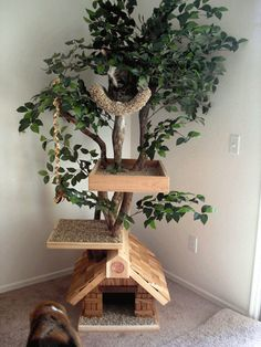 A #treehouse for your cat! Genius! Feline Design - DIY for Cat Homes