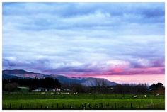Palmerston North, my home, at sunset!