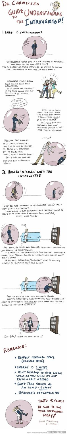 Guide to understanding the introverted.    This is totally true.