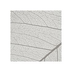 Leaf by Anna for Minted