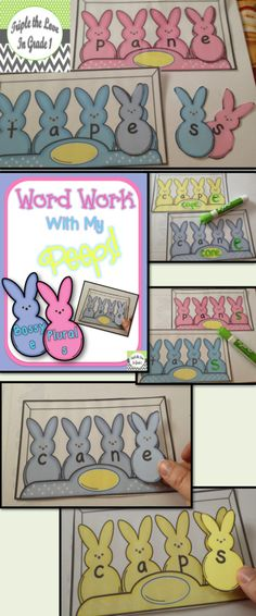 $ Bossy e and plural s word work center. Use with an expo marker or with the included bunny letters to cut out. Direction/idea sheet included!