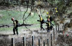 Colorado Firefighters (Black Forest Fire, June 17 | Colorado Springs Gazette)