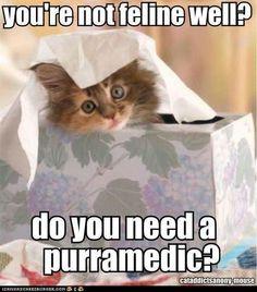 #humor   #lol  http://buymelaughs.com/