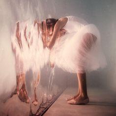 Curiousity by Elena Kalis