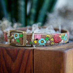 DIY Hand Painted Dog Collars -