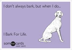 American Cancer Society Bark for Life