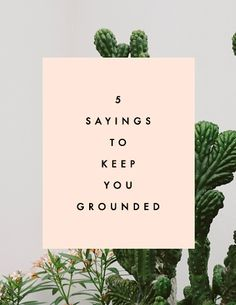 5 Sayings to Keep You Grounded - Clementine Daily