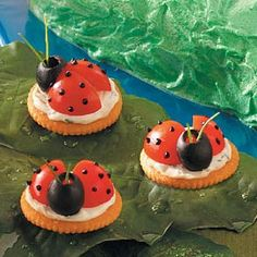 great for a kids ladybug party.