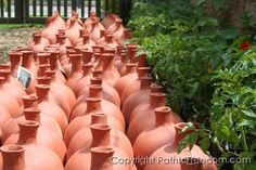 Ollas- watering clay pots.  Bury them then plant around them.  Save water