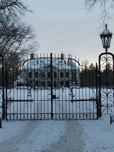wrought iron gate. yes :)