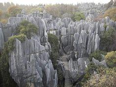 The Rock Forest.....Juana Diaz , ☀Puerto Rico☀
