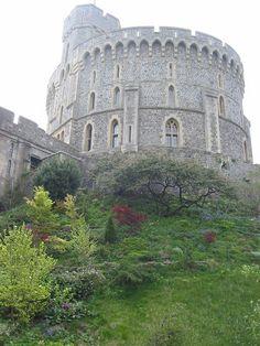 William the Conqueror   william the conqueror built jpg william the conqueror built this tower ...