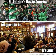 St Patty's Day in America, funny photo.