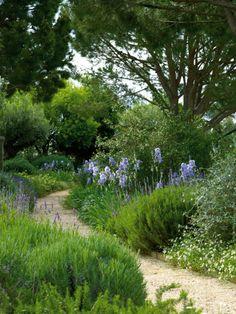 mediterranean garden in norway