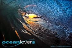ocean lover