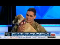 From Afghanistan with love: Soldiers reunited with dogs they promised to not leave behind - YouTube
